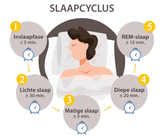 Dorsoo blog slaapcyclus