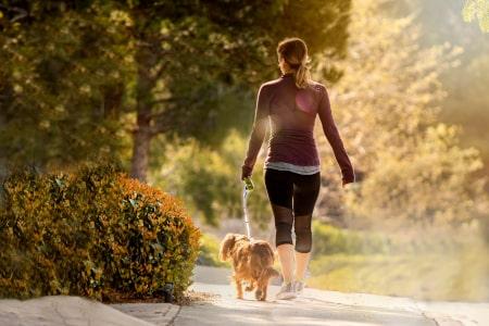 Dorsoo blog lage rugpijn na het slapen bewegen wandelen