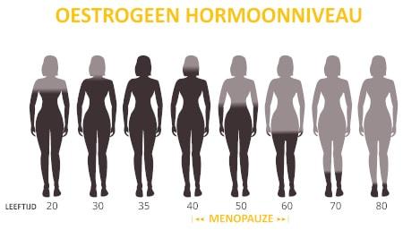 Dorsoo blog menopauze rugklachten oestrogeen