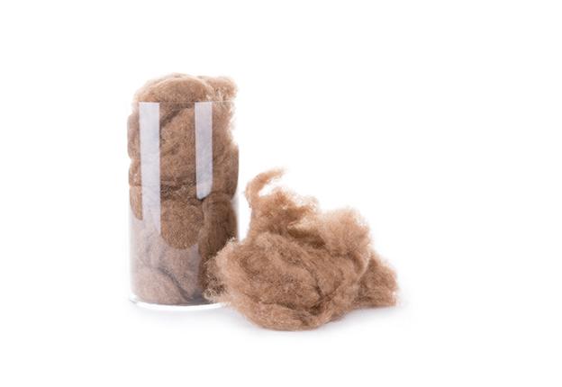 Dekbedden kamelenhaar - Dorsoo